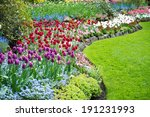 Variety Of Spring Flowers...