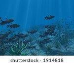 schools of fish under tropical... | Shutterstock . vector #1914818