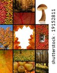 autumn | Shutterstock . vector #19152811