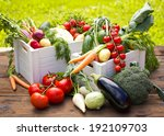 fresh and organic vegetables in ... | Shutterstock . vector #192109703