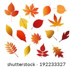 autumnal red  yellow and brown... | Shutterstock . vector #192233327