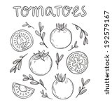 sketched tomatoes hand drawn... | Shutterstock .eps vector #192579167