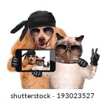 dog with cat taking a selfie... | Shutterstock . vector #193023527