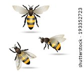 Realistic flying honey bees set isolated on white background vector illustration - stock vector