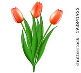 bouquet from red tulips | Shutterstock .eps vector #193841933