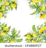colorful floral dandelion... | Shutterstock . vector #193880927