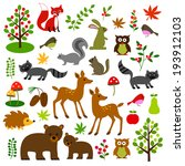animals,apple,bears,berries,bird,chipmunk,cones,deer,fern,forest,fox,hedgehog,leaves,mushroom,owl