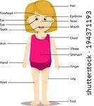 illustrator of girl with...   Shutterstock .eps vector #194371193