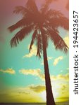 retro styled lone palm tree in... | Shutterstock . vector #194423657