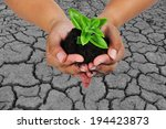 tree planting in arid areas to... | Shutterstock . vector #194423873