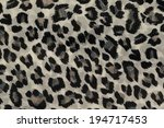 leopard  pattern background... | Shutterstock . vector #194717453