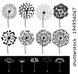 Beautiful Dandelions Set Vector