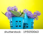 beautiful lilac flowers on a... | Shutterstock . vector #195050063