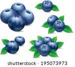 different groups of blueberries ... | Shutterstock .eps vector #195073973
