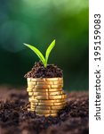 golden coins in soil with young ...