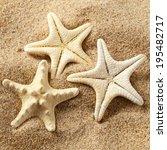Three Starfishes On Sand