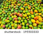 Colorful Of Tropical Mango In...