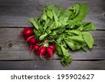 fresh home grown radishes on... | Shutterstock . vector #195902627
