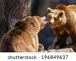 conversation between the bears | Shutterstock . vector #196849637