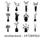 Set Of Vase Vector Illustration