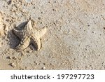 Starfish Shaped Sand On The...
