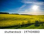 field of yellow rapeseed... | Shutterstock . vector #197434883
