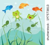 amphibian,animal,carnivore,cartoon,catching,character,colorful,cute,egg,fish,frog,gills,grass,grow,hatching
