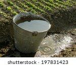 bucket full of water near...   Shutterstock . vector #197831423