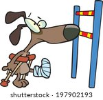 agility,animals,cast,crutches,dogs,health,hurdles,limp,pets,puppy
