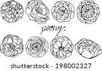 set of peony vector on white... | Shutterstock .eps vector #198002327