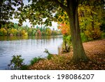 tree along the shore of lake... | Shutterstock . vector #198086207