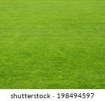 green lawn background | Shutterstock . vector #198494597