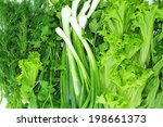 Salad  Parsley  Fennel  Green...