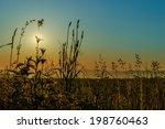 grass in the morning | Shutterstock . vector #198760463