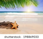 starfish with ocean   beach... | Shutterstock . vector #198869033