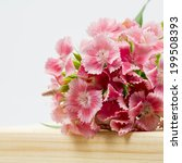 beautiful chinese carnations ... | Shutterstock . vector #199508393