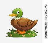 Cartoon Vector Duck