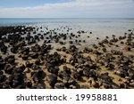 Stromatolites - stock photo