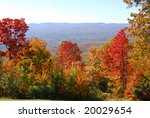 colors of fall | Shutterstock . vector #20029654