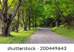 country lane lined with lush... | Shutterstock . vector #200449643