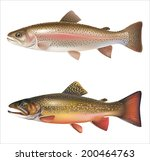 Rainbow Trout And Brook Trout...