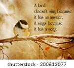 inspirational quote on nature... | Shutterstock . vector #200613077