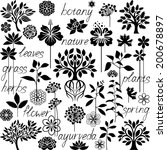 plants collection   Shutterstock .eps vector #200678897