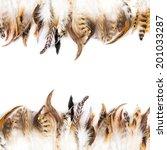 Pattern Of Bird Feather...