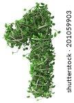 green alphabet made of trees...   Shutterstock . vector #201059903