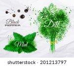 spices herbs set drawn...