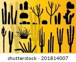 cactus plants detailed...