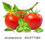 red ripe tomatoes with water... | Shutterstock .eps vector #201977383