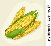 stylized vector illustration of ... | Shutterstock .eps vector #201979867
