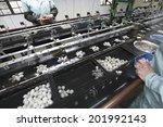 An Image Of Silk Factory
